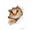 ブロッコリーキャラクタースリーブ・ミニ 猫「呼んだ?」