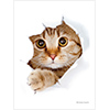 ブロッコリーキャラクタースリーブ 猫「呼んだ?」