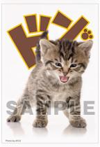 キャラクタースリーブコレクション・ミニ 第11弾 リトルバスターズ!子猫
